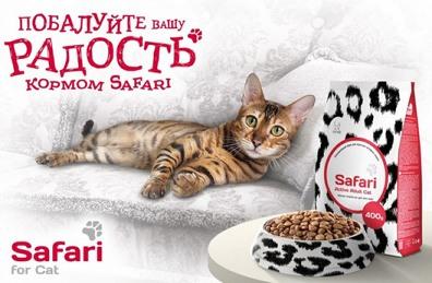Как кошка Симба начала рекламировать премиум-корм Сафари. -